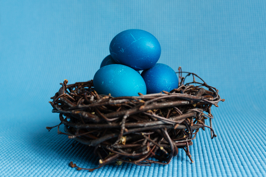 Blue Easter eggs in the nest on blue background